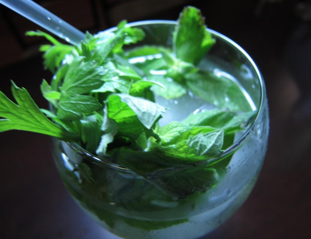 Spanish-style gin tonic