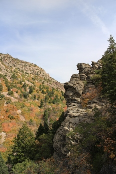 Diverse terrain on the Malans Peak trail