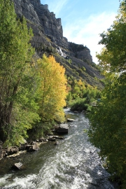 Provo River running through the Uinta Mountains